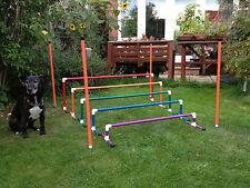 Dog Agility Colourful 5 piece Long Jump by Jessejump Agility