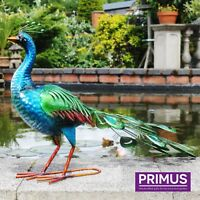 Primus Hand Painted Large Vibrant Peacock Stunning Garden Ornament Sculpture