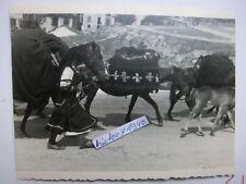 Foto: KAVALA - GRIECHENLAND.Hirtenvolk mit Pferde.  (I)