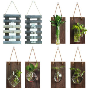 Wall Hanging Glass Planter Vases Air Plant Container Terrarium with Wooden Board
