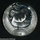 Koala Paperweight Signed Mats Jonasson Numbered Glass Sweden 2.5