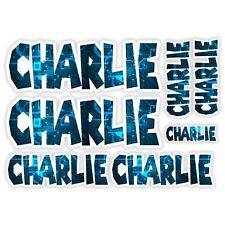CHARLIE Vinyl Name Stickers A5 Sheet Computer Chip Laptop Name Kids Gift #30006