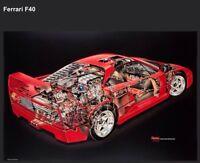 Ferrari F-40 Cutaway Art - David Kimble. Out of Print Car Poster! Own It! Wow!