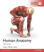 NEW 3 Days to AUS Human Anatomy 8E Elaine Marieb Wilhelm Jon Mallatt 8th Edition