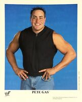 WWE PETE GAS P-702 OFFICIAL LICENSED 8X10 PROMO PHOTO VERY RARE