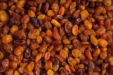 2,5kg Sultaninen Sultanas ungesüsst Rosinen  Top Qualität 2500g