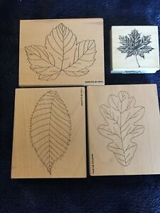 Martha by Mail/ Inkadinkado  Mounted Rubber Stamps Leaf Patterns