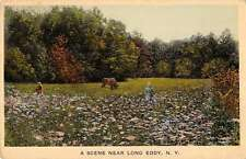 Long Eddy New York scenic view children picking flowers antique pc Y11248