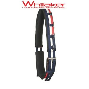 LUNGING ROLLER | John Whitaker Anatomically Shaped Padded Horse Lunge Roller