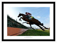 More details for tiger roll jumps to win 2019 grand national horse racing photo memorabilia