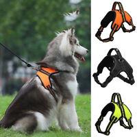 Pet Harness Leash Dog Puppy Soft Mesh Walking Collar Strap Vest Harness S M L XL