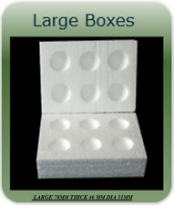 20 LARGE POLYSTYRENE EGG BOXES HATCHING/INCUBATION CHICKEN