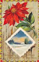 MERRY CHRISTMAS & HAPPY NEW YEAR c1910 Embossed Postcard Poinsettia Snow