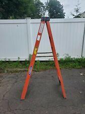 6 Werner Fiberglass 300 Rated Step Ladder