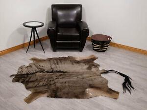 Blue Wildebeest Skin (AGS03-G2173EW) 8UL28