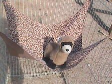 "Ferret Hammock - Brown & Tan Leopard Print - 15"" x 15"""
