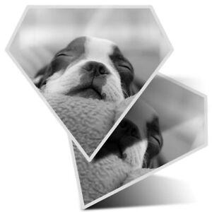 2 x Diamond Stickers 7.5 cm - Boston Terrier Dog Seeping  #16616