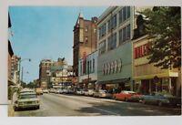 York Pennsylvania Adlers, McCrory's, Bear's Market Street 1950's Postcard B17