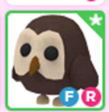 ⭐️Fly Ride FR OWL⭐️ Adopt me pet Roblox⭐️