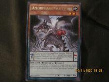 Yu-GI-Oh cards:Armophage Gluttony