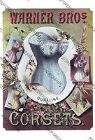 Poster Art Vintage Corset Advert Warner Bros Retro Victorian re-print ,A4,A3,A3+