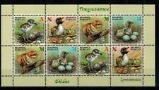 2018 Belarus. birds, Chicks, sheet, MNH
