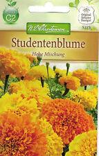 5275 Studentenblume 'Hohe Mischung' Tagetes erecta farbenfroh gefüllt Samen