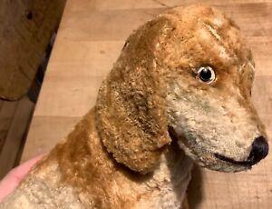 RARE Antique Vintage Steiff SIlk Plush Bazi Dachshund Dog Blank Button ID HTF