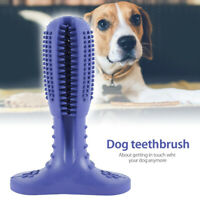 AU ! Dog Toothbrush Molars Brush Toy Pet Dental Health Cleaning Teeth Oral Care