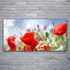 Leinwand-Bilder Wandbild Canvas Kunstdruck 120x60 Mohnblumen Natur