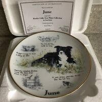 BORDER COLLIE DOG YEAR PLATE JUNE DANBURY MINT PAUL DOYLE BOX & CERTIFICATE