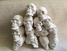 1/6 Skull Set Totenkopf 14x Bones Diorama Custom unbemalt B-Ware
