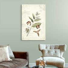 Wall26 - Vintage Style Leaves and Seeds Gallery - CVS - 32x48 inches