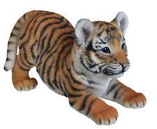 Vivid Arts - REAL LIFE ZOO ANIMALS - Playful Tiger Cub