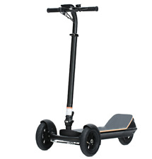 Three Wheel Electric Scooter 450W Motor Power Adult Tricycle 25km/h 48V Battery
