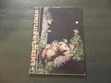 American Rifleman Jun 1962 Everyone's Favorite Marsupial Id:27658
