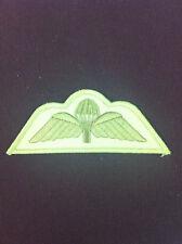 RAF Para Wings on sand