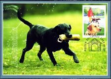 Labrador Retriever Black Blind-Dog Guide Dog Sweden Maxi FDC 2001