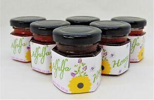 2 Ounce Alfalfa Honey - 6 Small Glass Jars