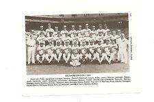 Orioles 1980 Team Picture Eddie Murray Jim Palmer Cal Ripken Sr. Jim Palmer