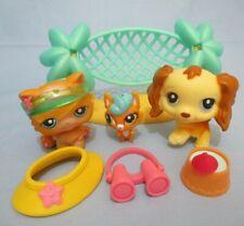 Littlest Pet Shop Random Lot Orange Cat Dog Baby 8 Pcs 3 LPS 5 Accessories