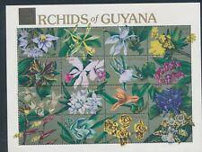 XC25789 Guyana orchids plants nature flowers XXL sheet MNH