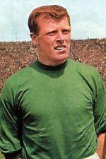 Football Photo>JOHN FALLON Celtic 1965-66