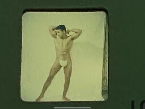 BRUCE OF LOS ANGELES Slide/negatives/719-2/beefcake/gay Interest/male Pinup