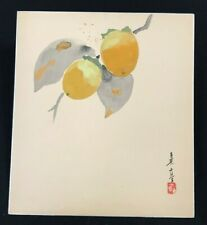 "JAPANESE VINTAGE WATERCOLOR PAINTINGS SHIKISHI ""Persimmon""  #2111"