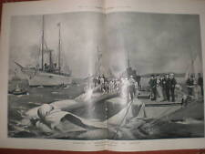 UK America Cup yacht Shamrock II after accident 1901