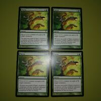 Thrive x4 Dissension 4x Playset Magic the Gathering MTG