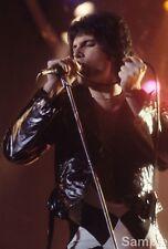 Freddie Mercury Legendary Singer Queen Glossy Music Photo Print Picture
