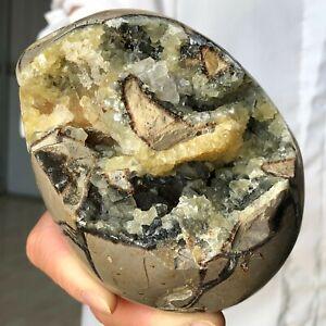 1464g Septarian Dragon Stone Geode Druzy Quartz Crystal Mineral Specimens V545