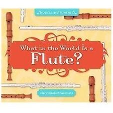 What in the World Is a Flute? by Mary Elizabeth Salzmann (2012, Book, Other)